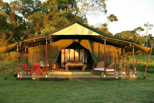 elephant pepper camp kenya