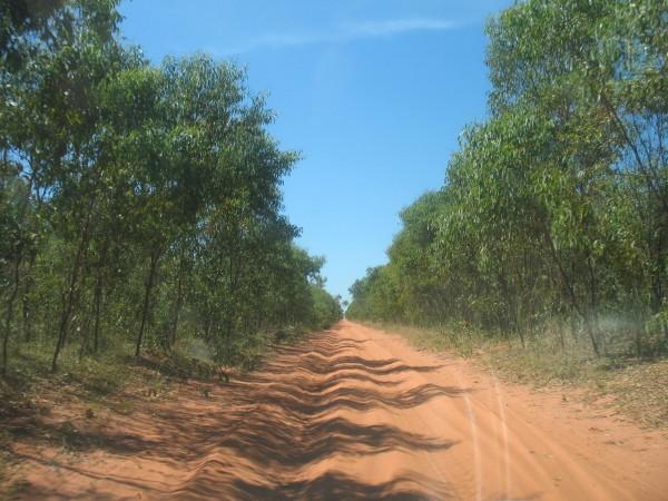gnylmarung road