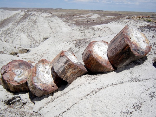 Arizona Petrified_Forest_National_Park