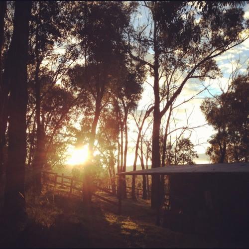 sunset australia