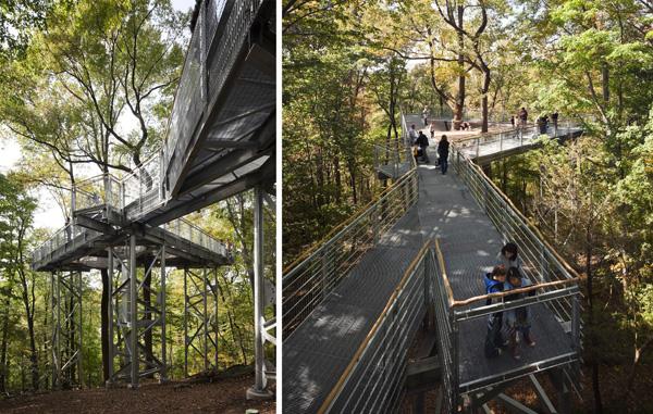 walkways morris arboretum
