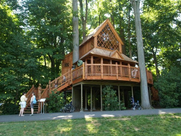 Tapping Into Our Love Of Treehouses