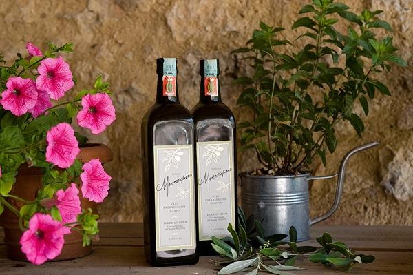 italian agriturismo montestigliano olive oil