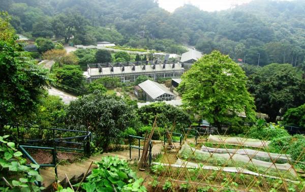 Kadoorie Farm and Botanic Garden, Hong Kong. Image: Bruce Nixon