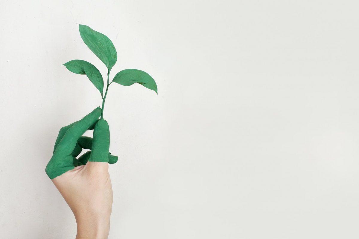stop greenwashing