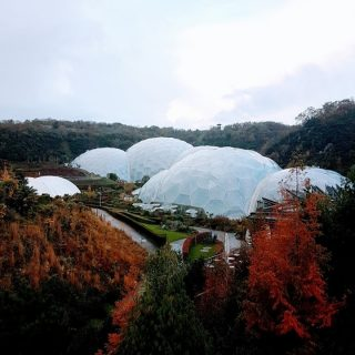 Since it first opened nearly 20 years ago, I have been desperate to get to The Eden Project in Cornwall. We finally made it in November last year. You usually see images of the place in summer, in full bloom, but to be honest I'm delighted we were there in autumn. The colours were amazing. And it wasn't overrun with people. In fact the day we were there was cold and a bit rainy, but with indoor biomes to explore it didn't really matter about the weather. ⠀⠀⠀⠀⠀⠀⠀⠀⠀ ⠀⠀⠀⠀⠀⠀⠀⠀⠀ Now @edenprojectcornwall is open again after #lockdown we're planning on going for a second wander around soon.⠀⠀⠀⠀⠀⠀⠀⠀⠀ ⠀⠀⠀⠀⠀⠀⠀⠀⠀ #edenprojectcornwall #theedenproject #edenproject #autumn #fall #autumncolors #biomes #biodomes #cornwall #visitengland #lovecornwalluk #conservation